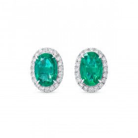 Natural Vivid Green Emerald Earrings, 1.79 Ct. (2.01 Ct. TW)